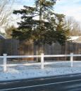 fence pics 026